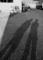 さにあらず shadows