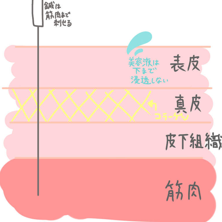 f:id:sanita_mita:20210115122834p:plain