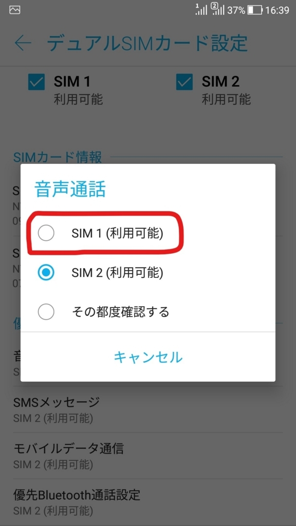 f:id:sankairenzoku10cm:20180630123341j:plain