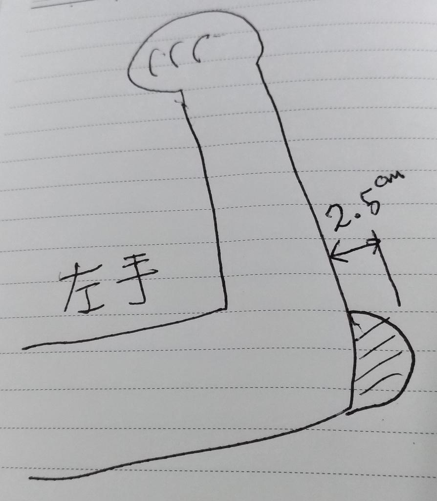 f:id:sankairenzoku10cm:20180901110701j:plain