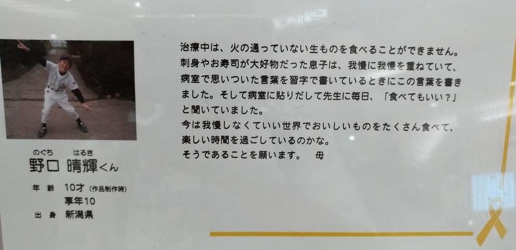 f:id:sankairenzoku10cm:20181127224643j:plain
