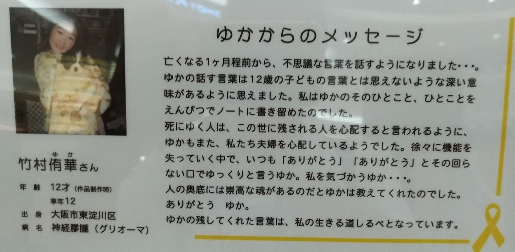 f:id:sankairenzoku10cm:20181127224912j:plain
