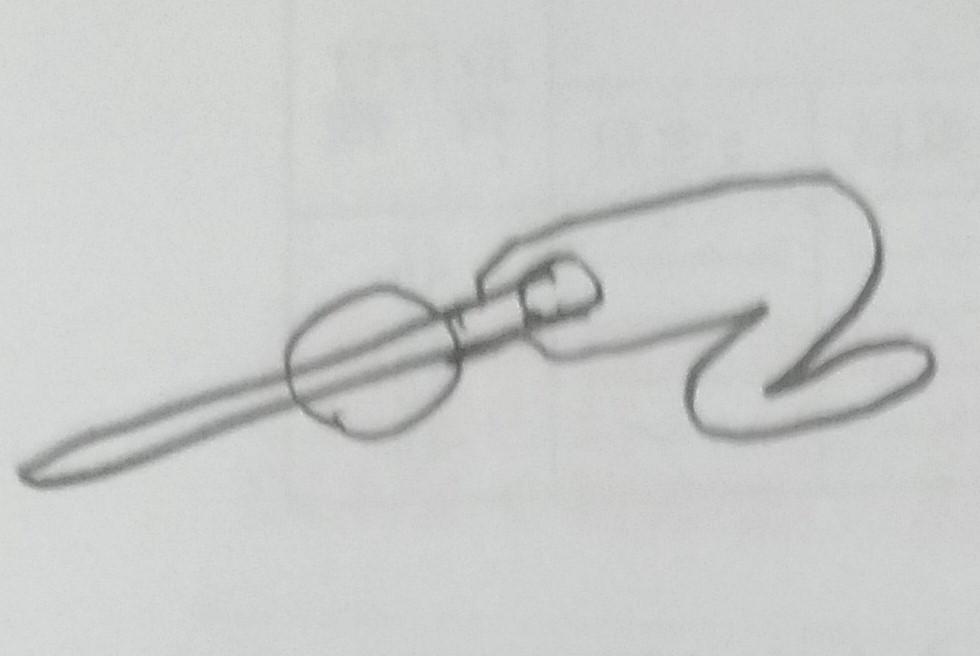 f:id:sankairenzoku10cm:20190111234733j:plain