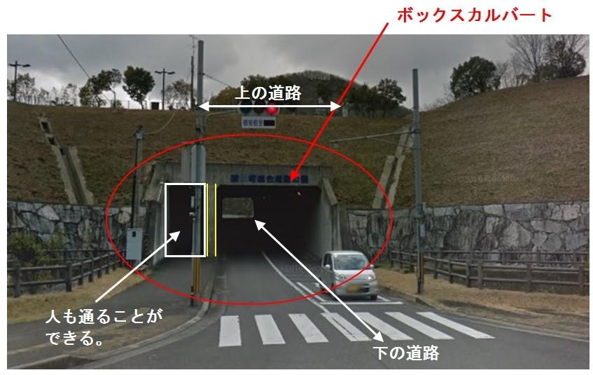 f:id:sankairenzoku10cm:20190409144435j:plain