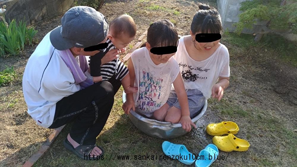 f:id:sankairenzoku10cm:20190528215545j:plain