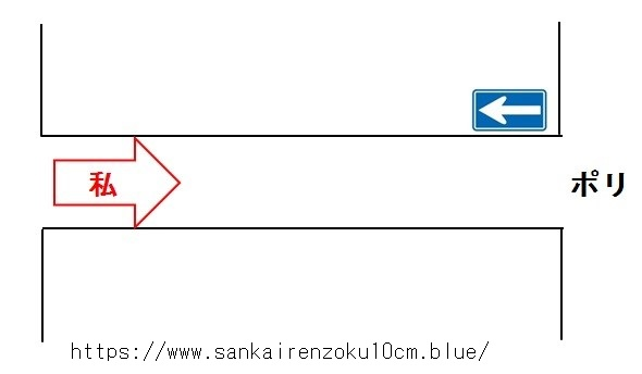 f:id:sankairenzoku10cm:20190802165822j:plain