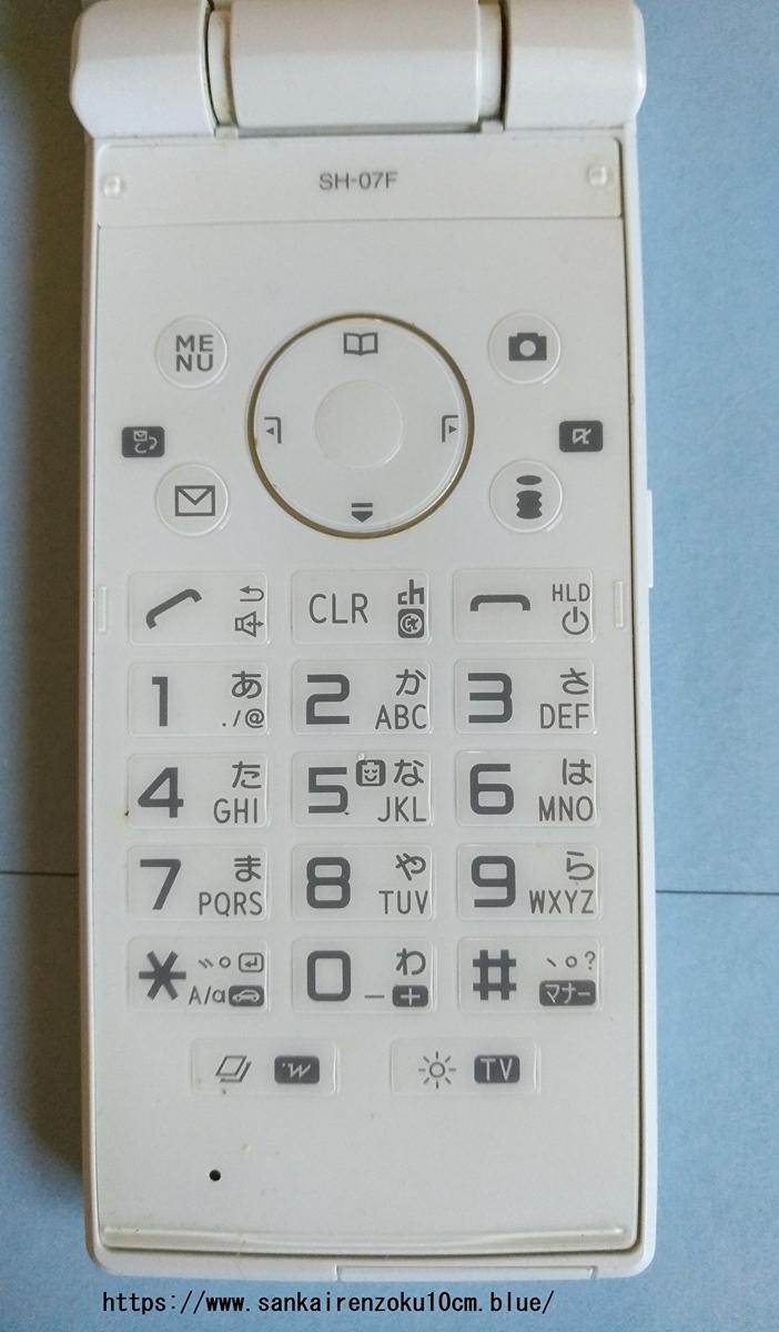 f:id:sankairenzoku10cm:20191102125047j:plain