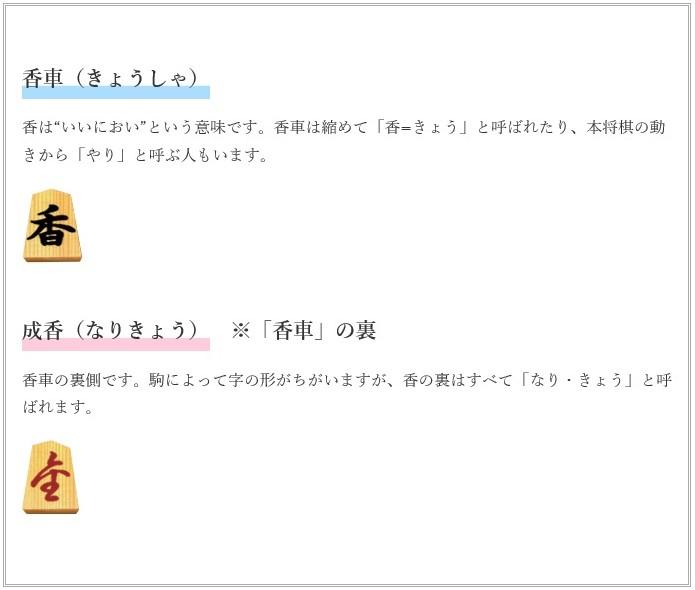 f:id:sankairenzoku10cm:20200114150337j:plain