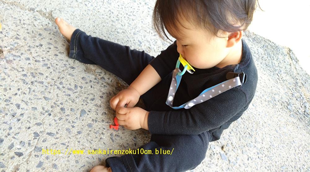 f:id:sankairenzoku10cm:20200504201217j:plain