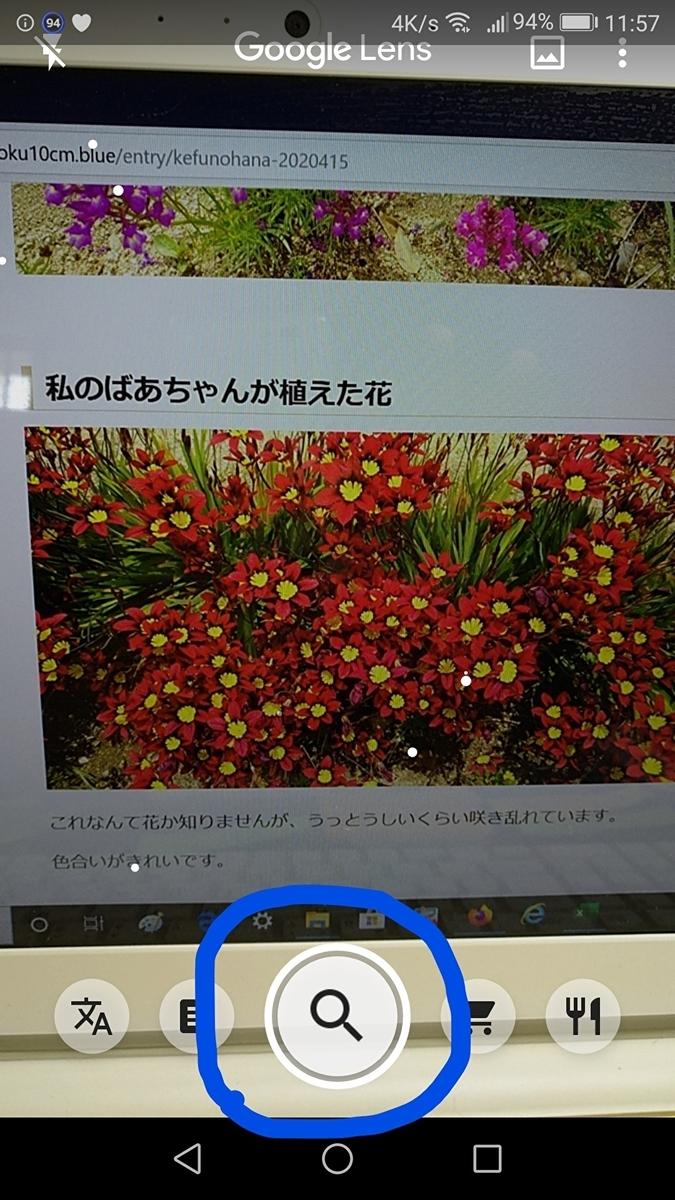f:id:sankairenzoku10cm:20200523144550j:plain