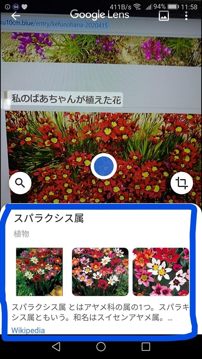 f:id:sankairenzoku10cm:20200523144651j:plain