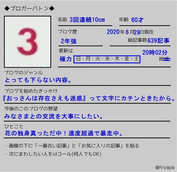 f:id:sankairenzoku10cm:20200629132812j:plain