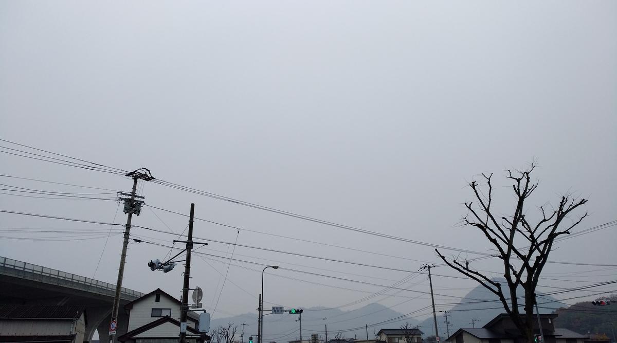 f:id:sankairenzoku10cm:20201224123718j:plain