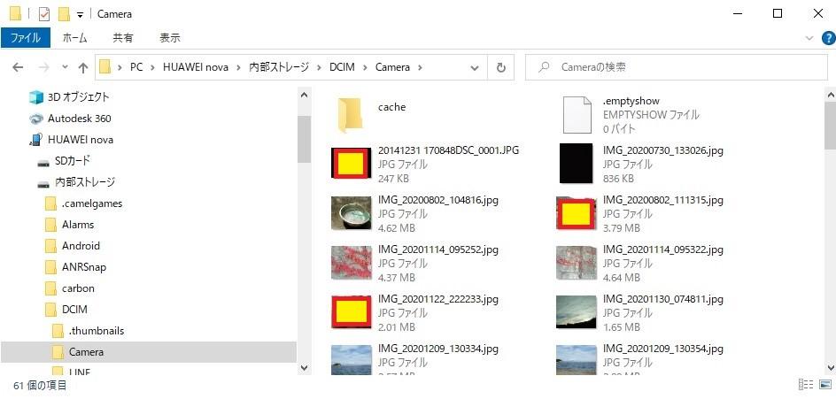 f:id:sankairenzoku10cm:20210624135838j:plain