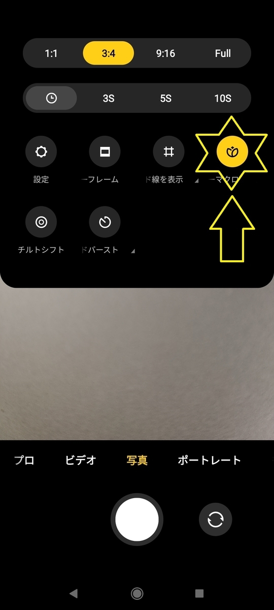 f:id:sankairenzoku10cm:20210904135053j:plain