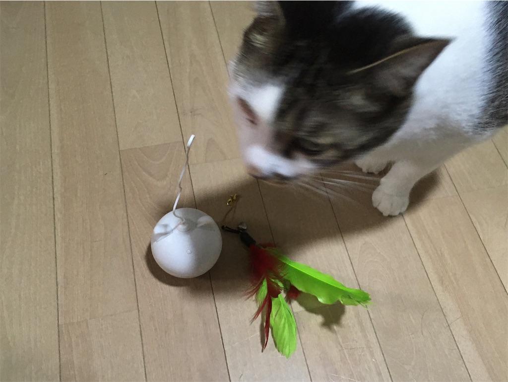 猫のおもちゃ 電動 BENTOPAL P02