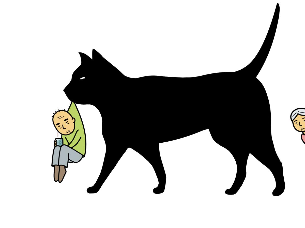 猫にモテたい!猫に好かれる人&嫌われやすい人