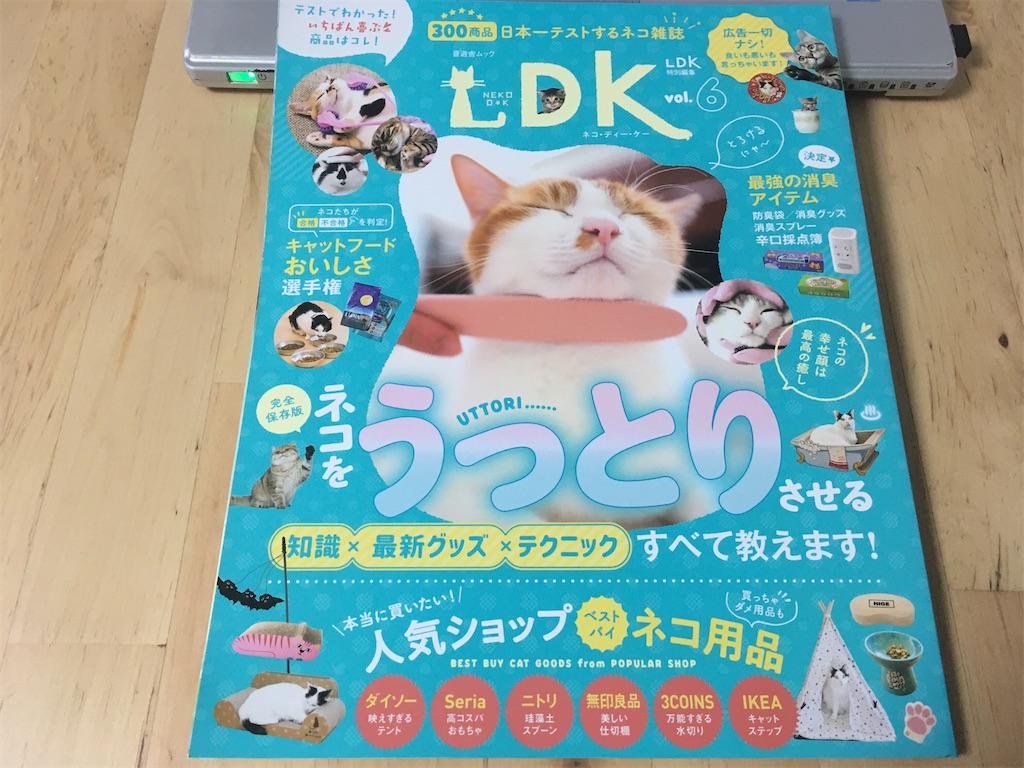 晋遊舎ムック ネコDK Vol.6 ネコをうっとりさせる知識×最新グッズ×テクニック