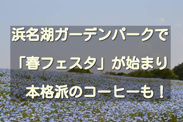 f:id:sannigo:20200407015050j:plain