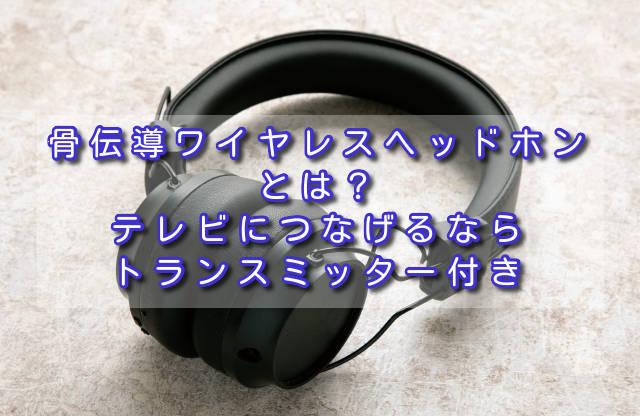 f:id:sannigo:20210927144512j:plain