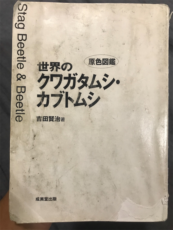 f:id:sanosuke9991:20181119180739j:image