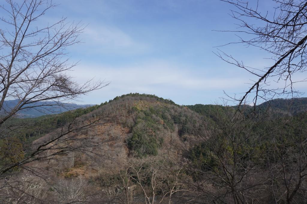 f:id:sanoyabasi:20170103231949j:plain