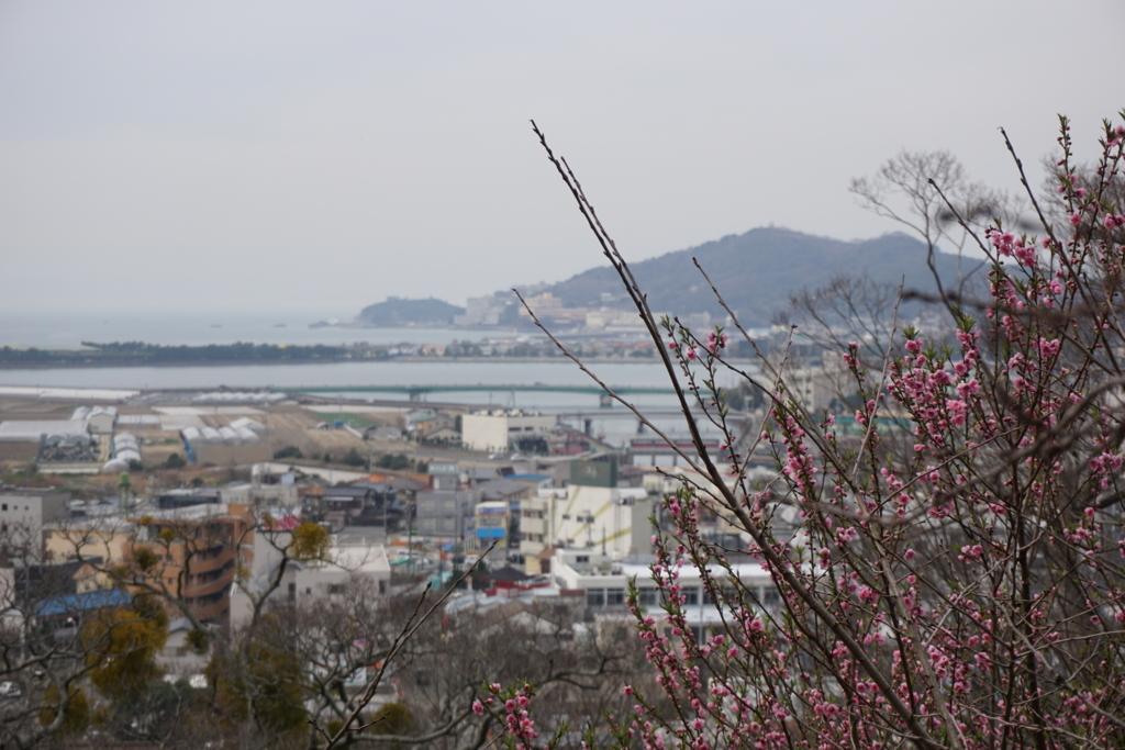 f:id:sanoyabasi:20170723130715j:plain