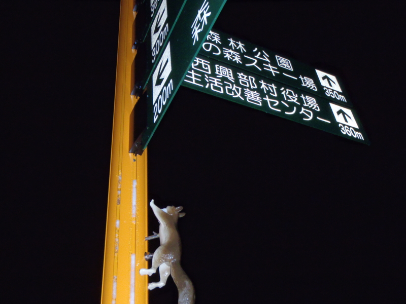 f:id:sanpo555:20120107190201j:image
