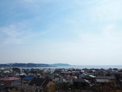f:id:sanpo_kurashi:20190316161511j:plain