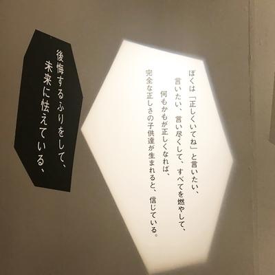f:id:sanpo_kurashi:20190321015007j:plain