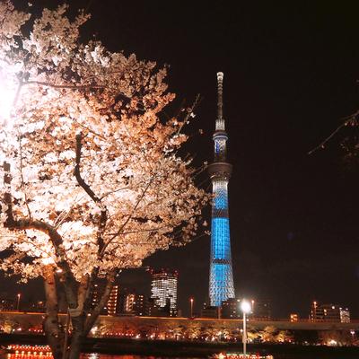 f:id:sanpo_kurashi:20190405095051j:plain