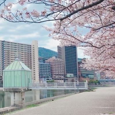 f:id:sanpo_kurashi:20200413014835j:plain
