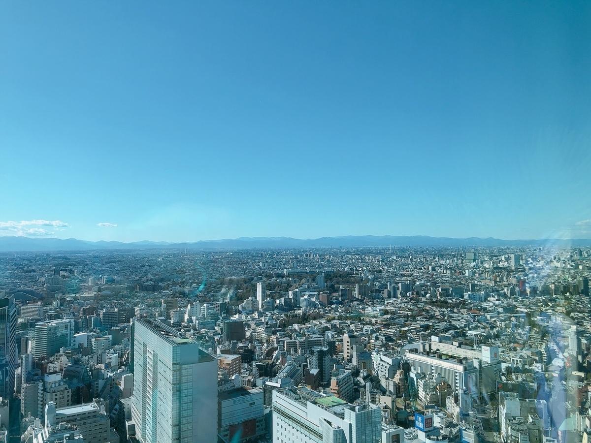 f:id:sanpo_shiho:20200203205154j:plain