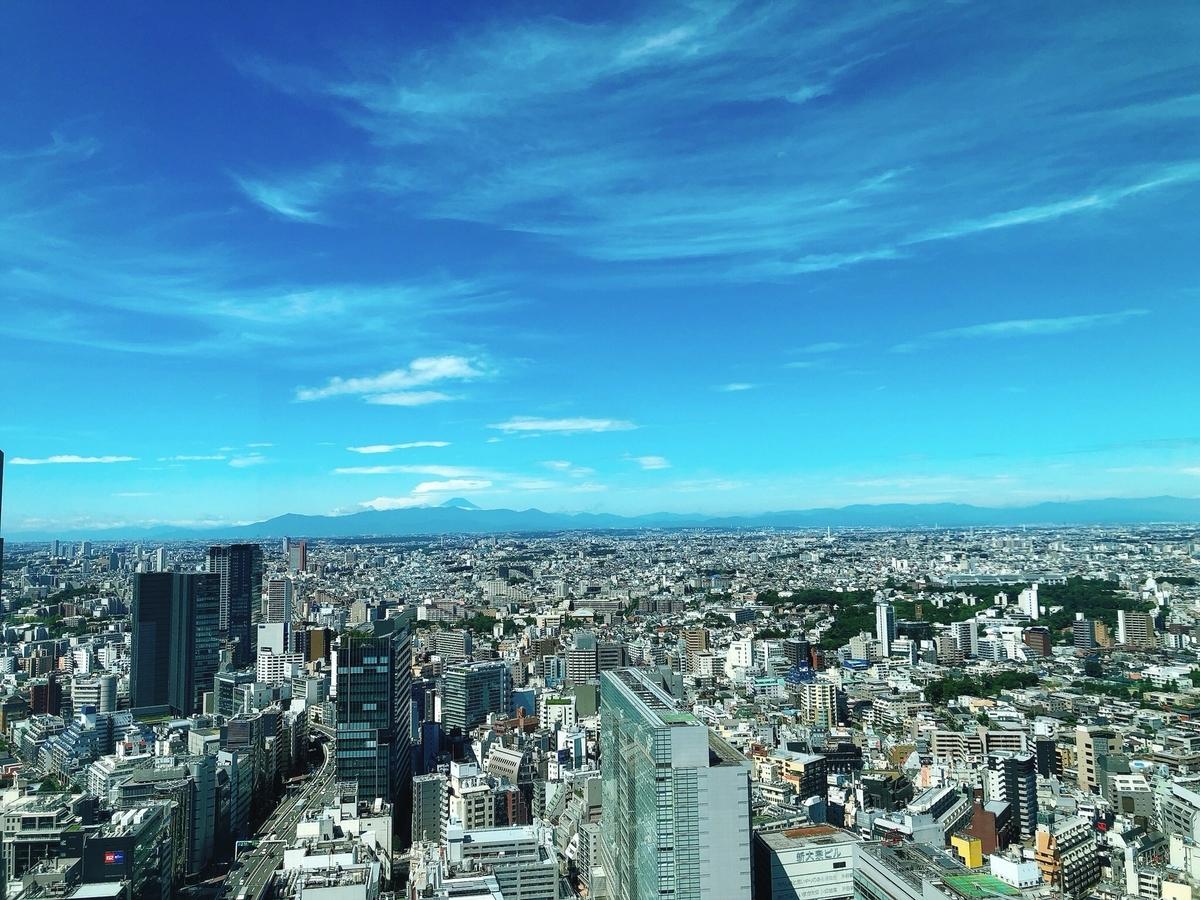 f:id:sanpo_shiho:20200828220513j:plain