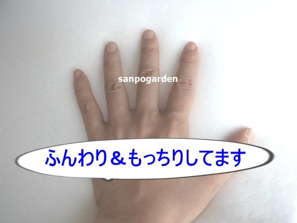 f:id:sanpogarden:20160901192929j:plain