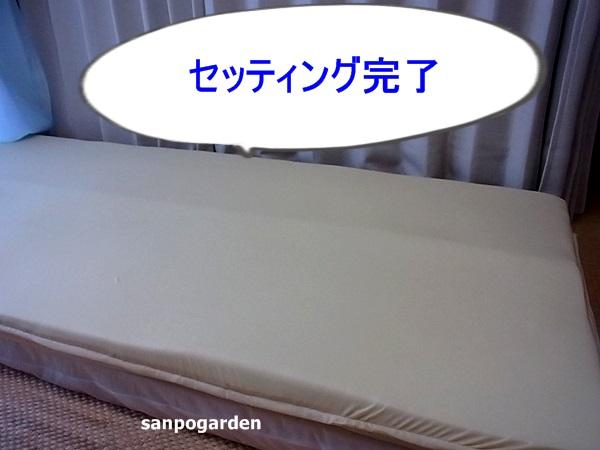 f:id:sanpogarden:20160901193820j:plain