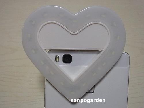 f:id:sanpogarden:20170105183726j:plain
