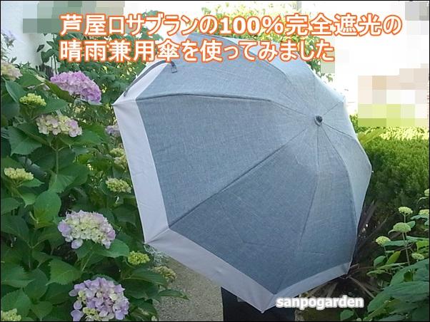f:id:sanpogarden:20170717145835j:plain