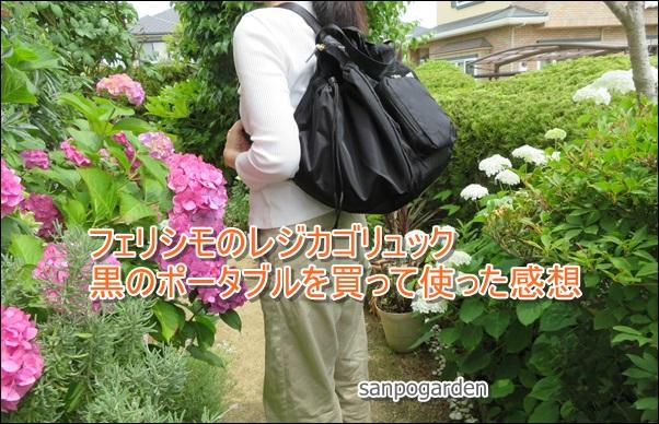 f:id:sanpogarden:20190620184940j:plain