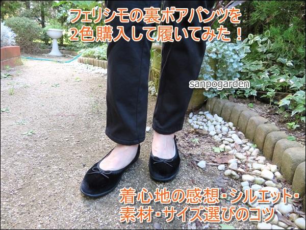 f:id:sanpogarden:20191013120951j:plain