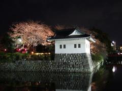 小田原城二の丸隅櫓(ライトアップ)