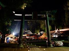 二荒山神社鳥居(ライトアップ)