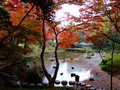 小石川後楽園の大堰川
