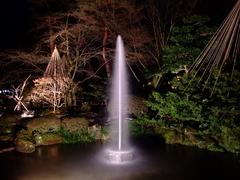兼六園の噴水(ライトアップ)