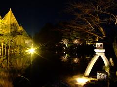 兼六園の徽軫灯籠(ライトアップ)