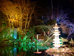 兼六園の瓢池(ライトアップ)
