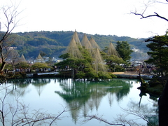 兼六園の霞ヶ池と唐崎松