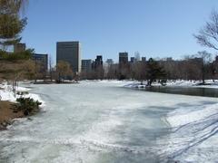 冬の中島公園