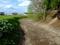 堀越城跡の空堀と土塁