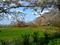桜の石川城跡